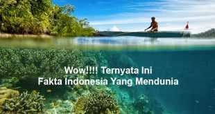 Fakta Indonesia